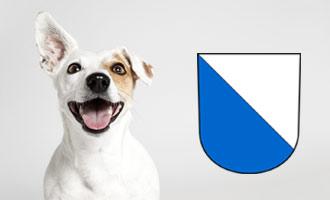 Hund mit Wappen des Kantons Zürich.
