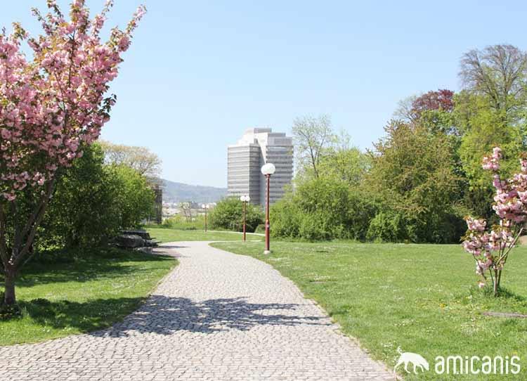 Parkanlage 8006 Zürich - im Hintergrund Gebäude Migros-Limmatplatz
