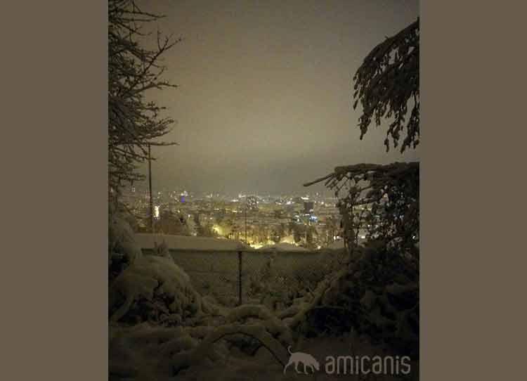 Aussicht Käferberg im Winter - nach dem Eindunkeln